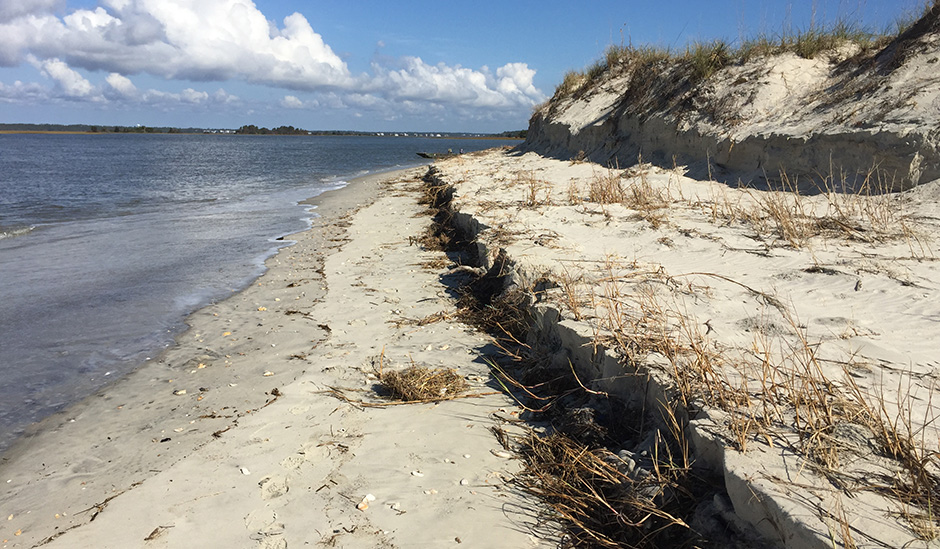 erosion hobcaw beach